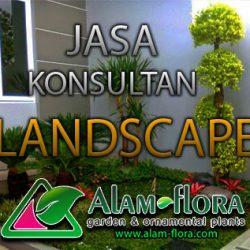 alam-flora_tukang_taman_surabaya_bonsai_banner_jasa_pembuatan_taman_feature_konsultan-landscape