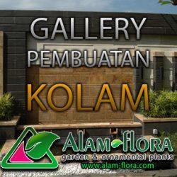 alam-flora_tukang_taman_surabaya_bonsai_banner_jasa_pembuatan_taman_feature_images_gallery-kolam