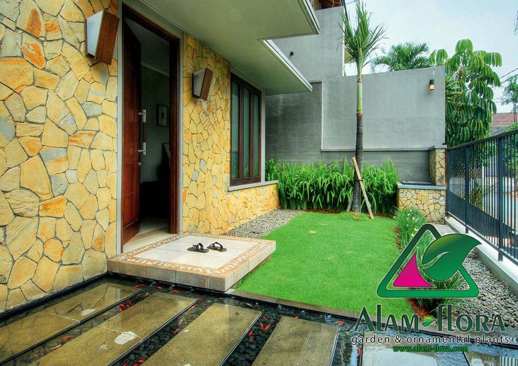 taman rumah minimalis dengan kolam ikan koi depan rumah