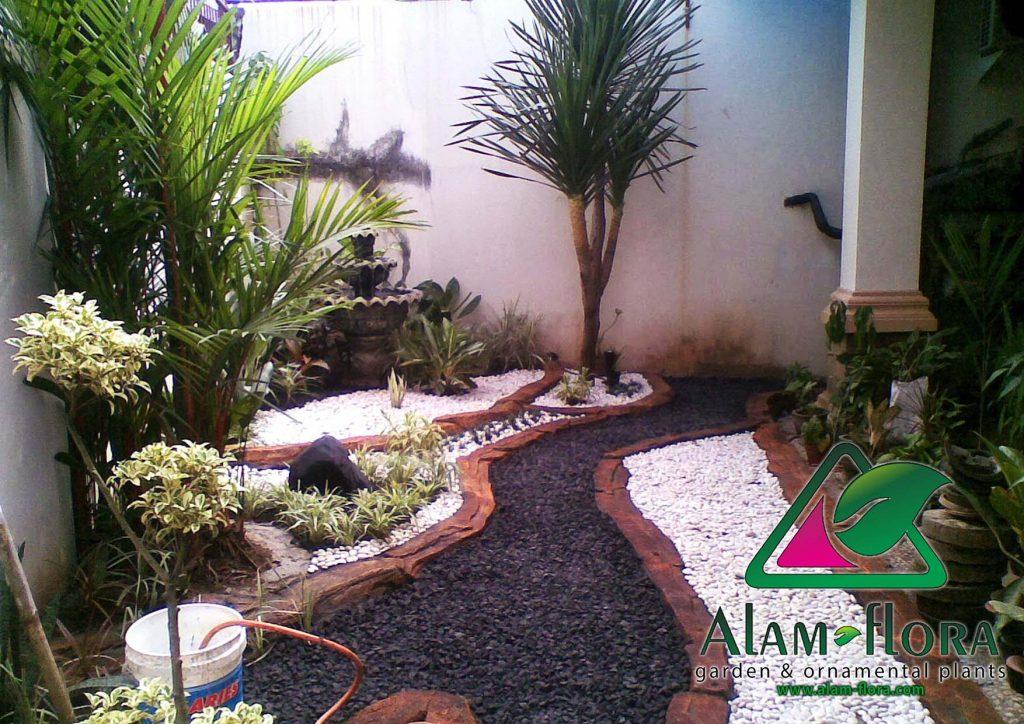 taman rumah minimalis tanpa rumput