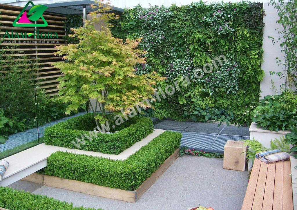 vertikal garden 20