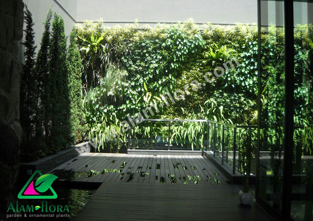 vertikal garden 6